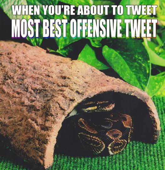 offensivesnakememe